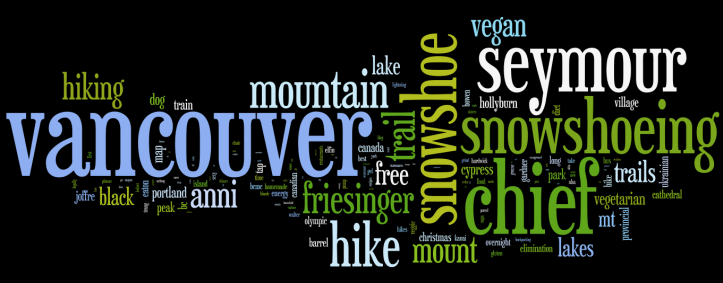 Wordle 2013 Search Terms